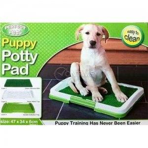 тоалетна за кучета на топ цени
