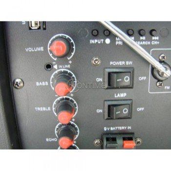 Тонколона за караоке Feiypu L-12 с дистанционно управление