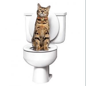 Тренировъчна котешка тоалетна Citi Kitty