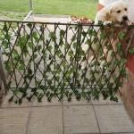 Декоративна ограда листа - хармоника 200/100см